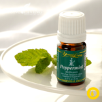 Peppermint-Young-Living-essential-oil1[1]